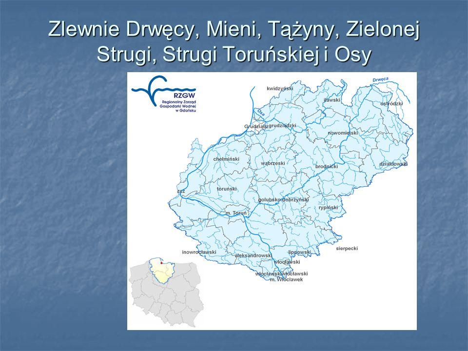 Zlewnie Drwęcy, Mieni, Tążyny, Zielonej Strugi, Strugi Toruńskiej i Osy