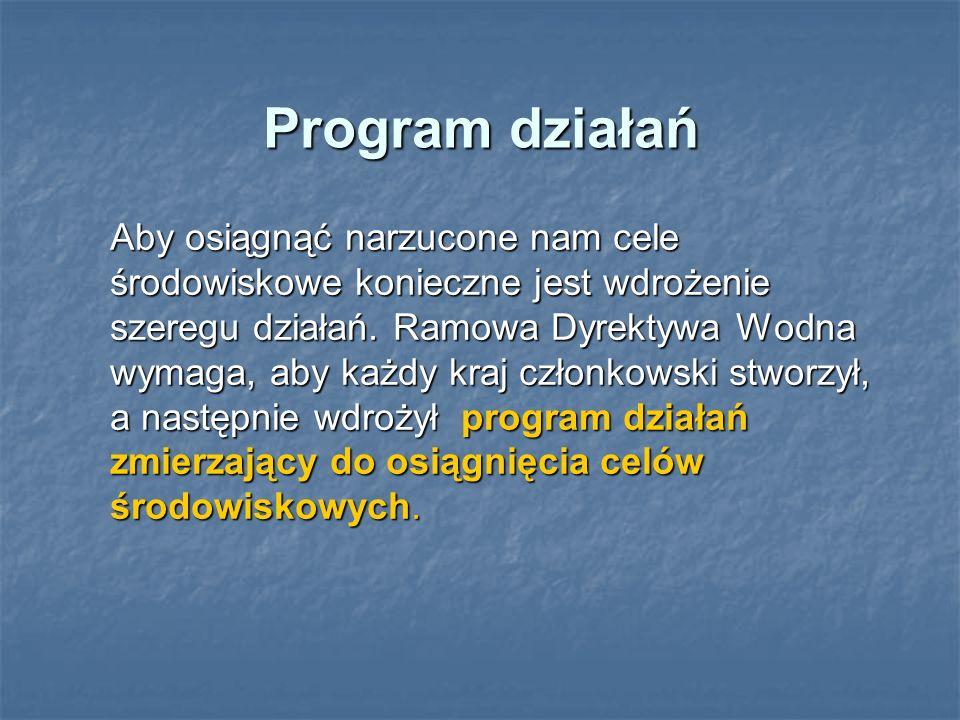 Program działań