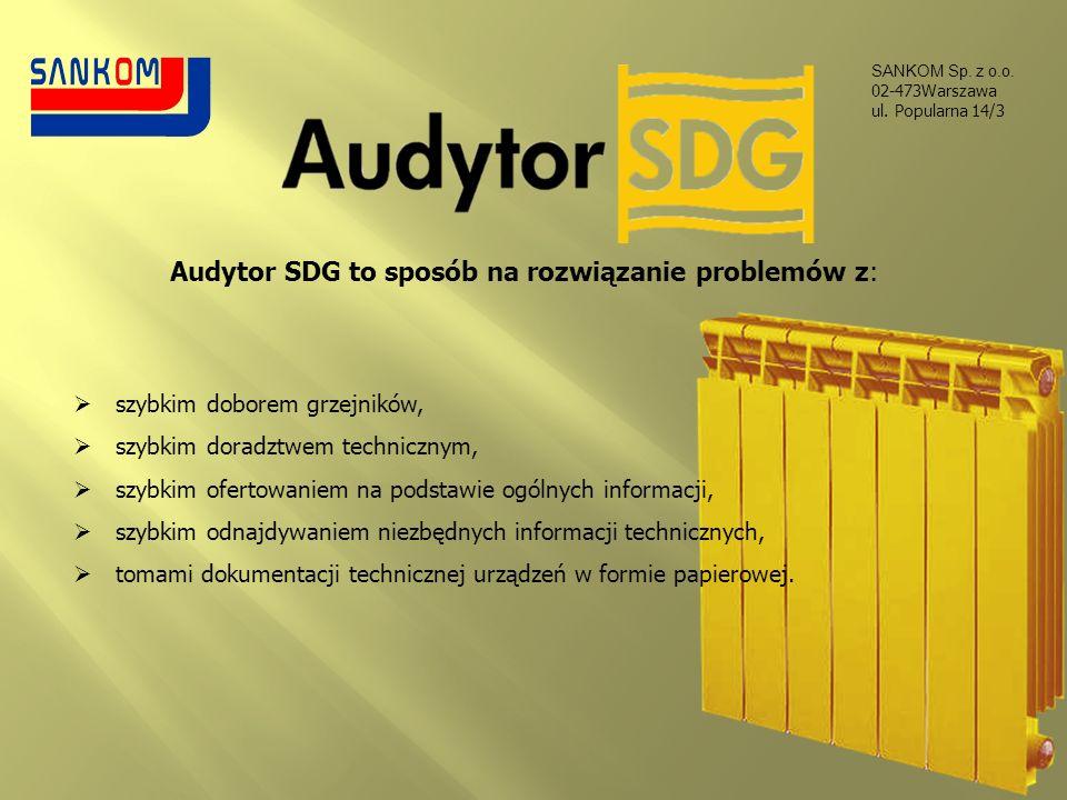 Audytor SDG to sposób na rozwiązanie problemów z: