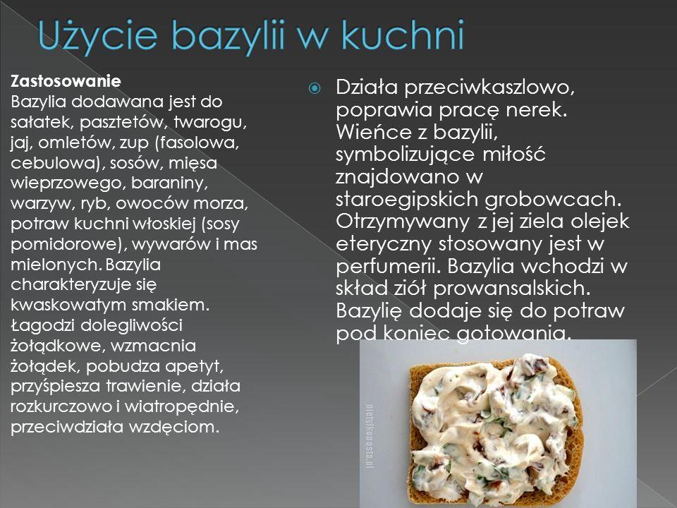 Użycie bazylii w kuchni