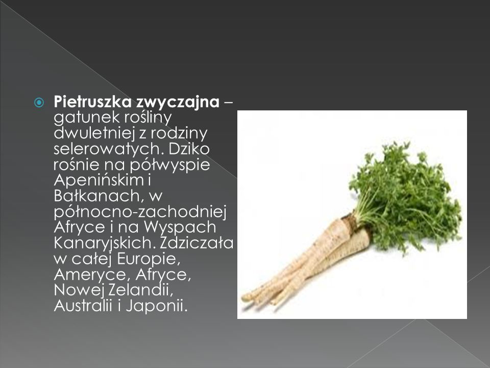 Pietruszka zwyczajna – gatunek rośliny dwuletniej z rodziny selerowatych.