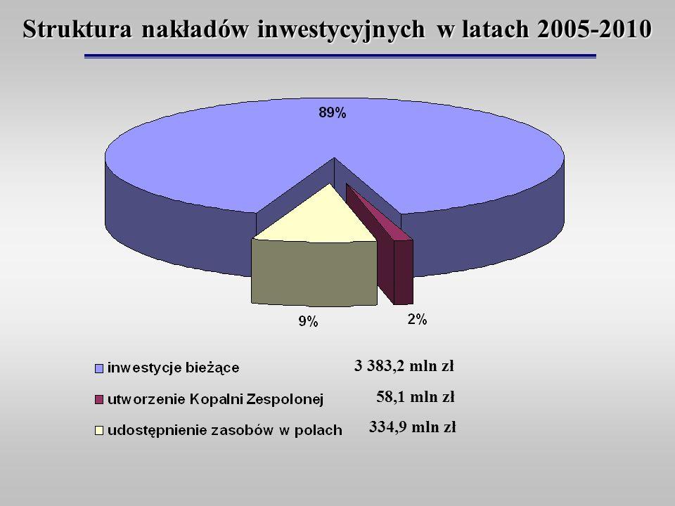 Struktura nakładów inwestycyjnych w latach 2005-2010