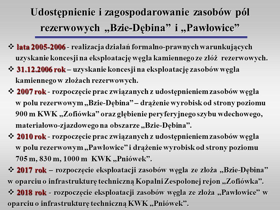 """Udostępnienie i zagospodarowanie zasobów pól rezerwowych """"Bzie-Dębina i """"Pawłowice"""