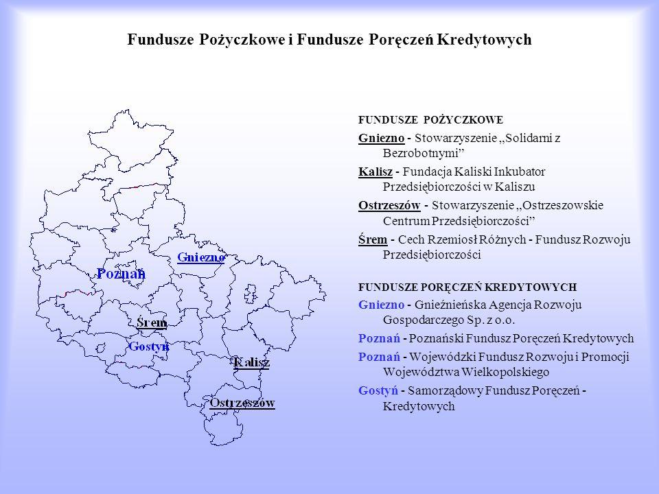 Fundusze Pożyczkowe i Fundusze Poręczeń Kredytowych