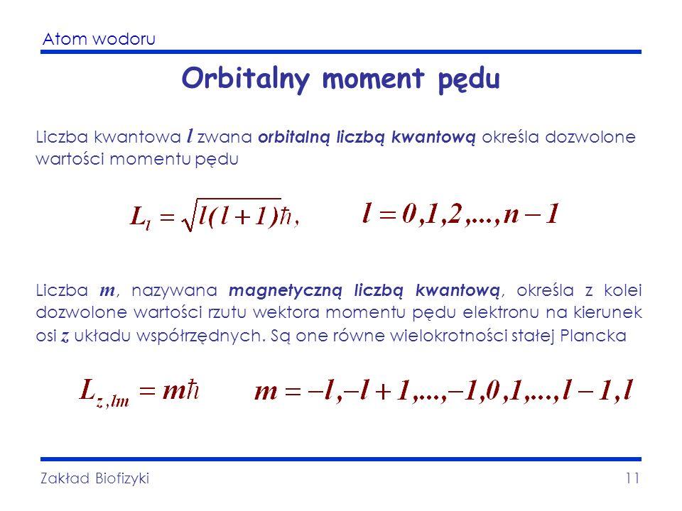 Orbitalny moment pędu Liczba kwantowa l zwana orbitalną liczbą kwantową określa dozwolone wartości momentu pędu.