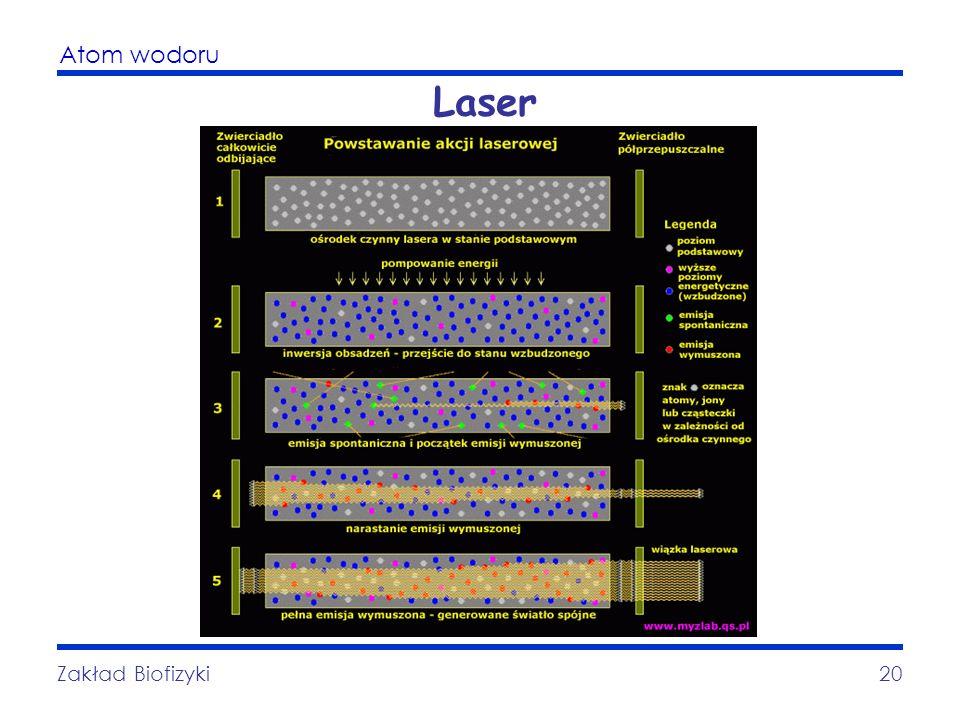 Laser Zakład Biofizyki