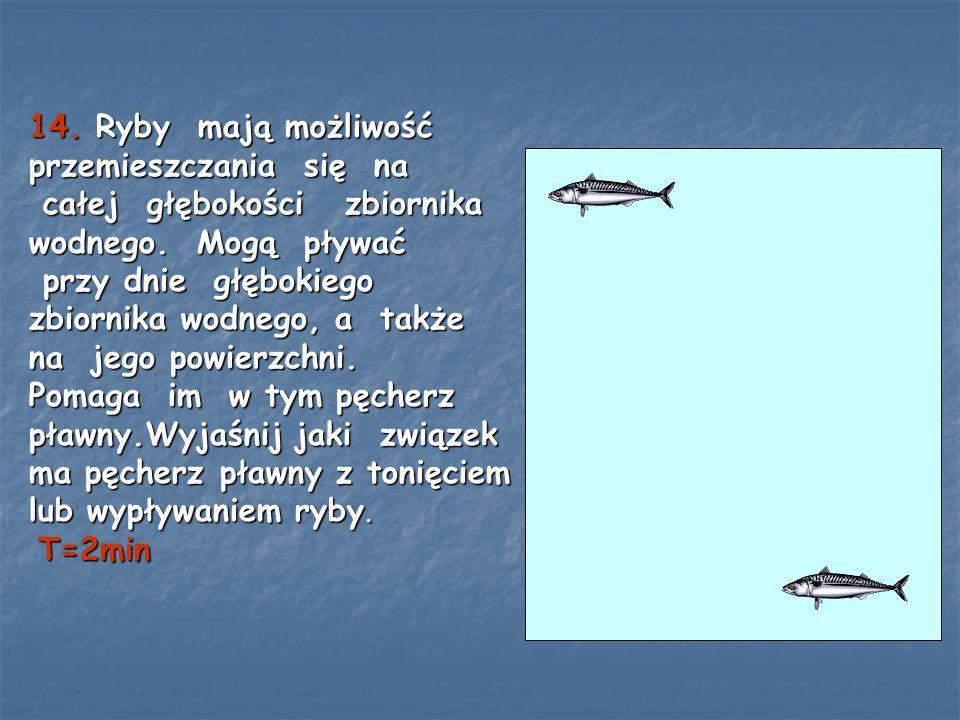 14. Ryby mają możliwość przemieszczania się na całej głębokości zbiornika wodnego.