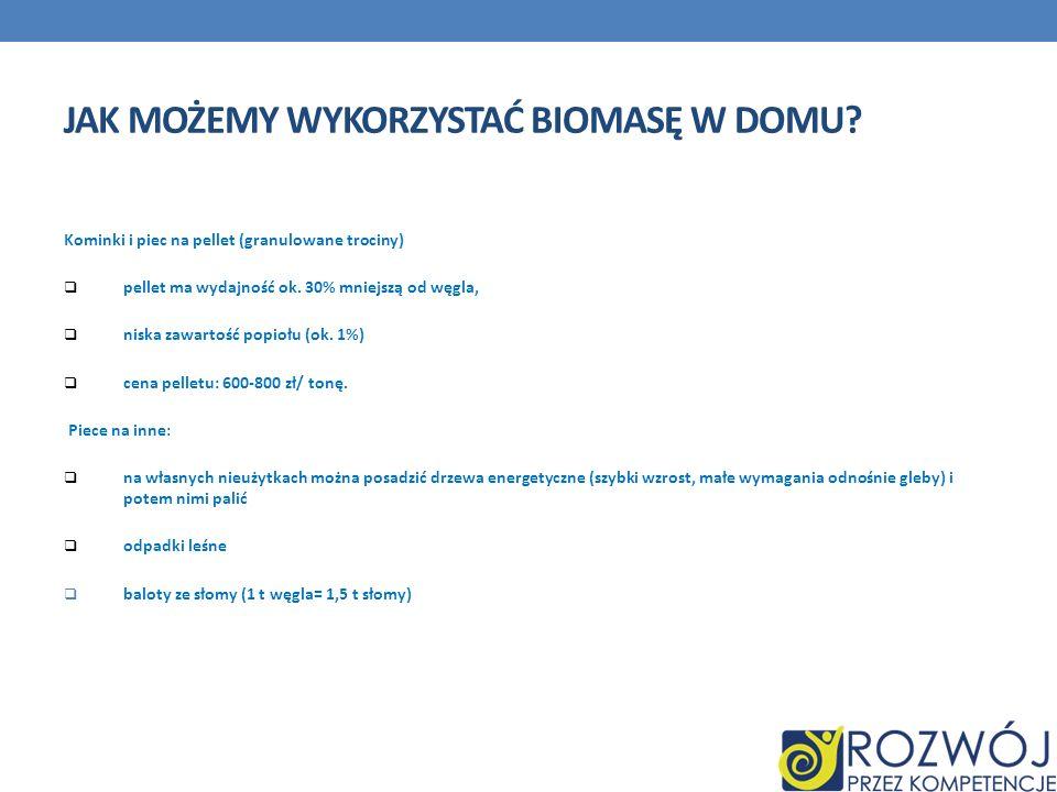 Jak możemy wykorzystać biomasę w domu