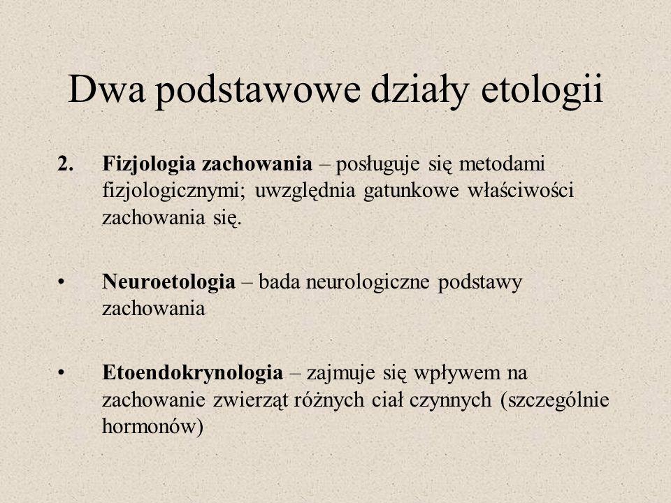 Dwa podstawowe działy etologii