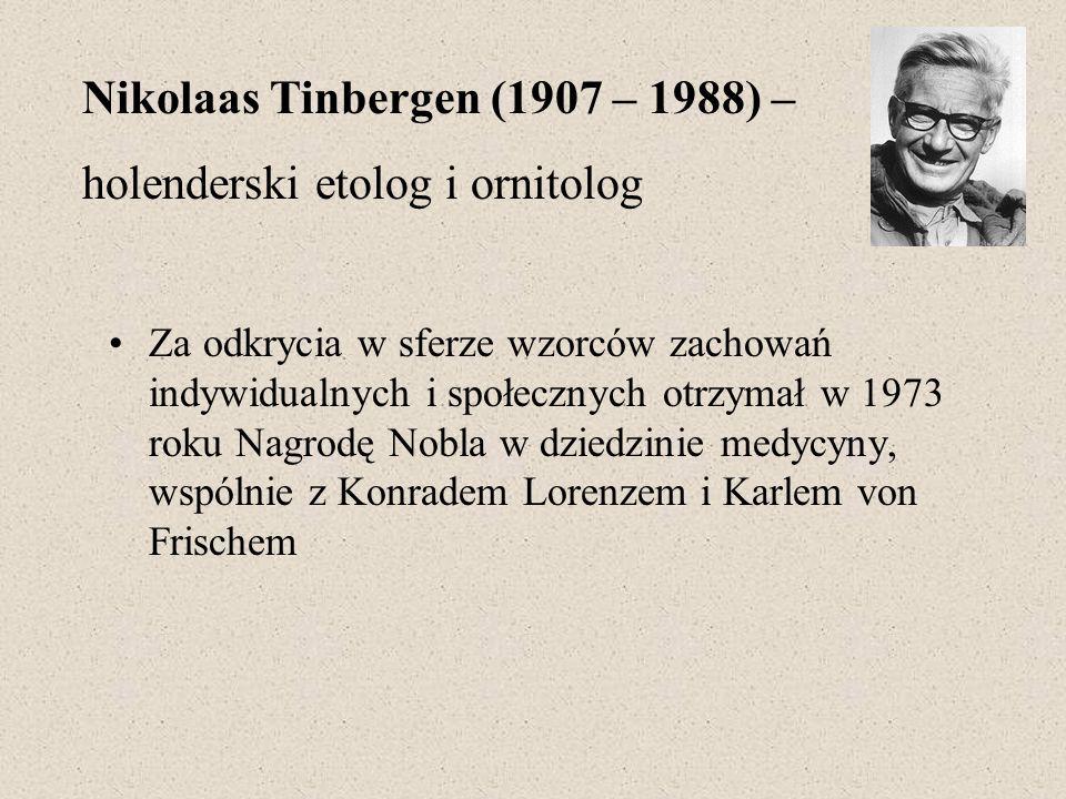 Nikolaas Tinbergen (1907 – 1988) – holenderski etolog i ornitolog