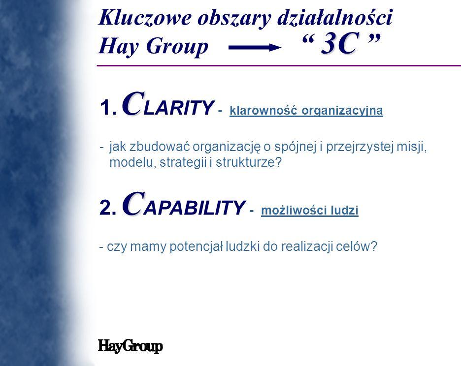 Kluczowe obszary działalności Hay Group 3C