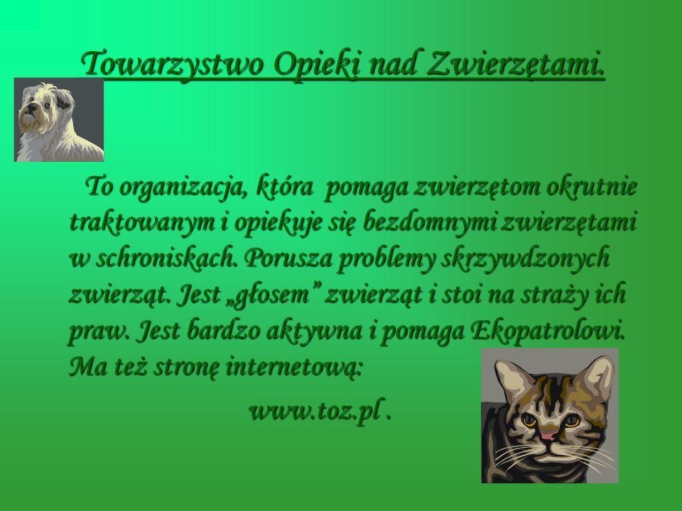 Towarzystwo Opieki nad Zwierzętami.