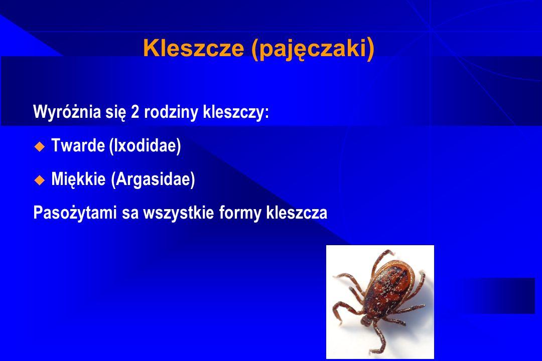 Kleszcze (pajęczaki) Wyróżnia się 2 rodziny kleszczy: