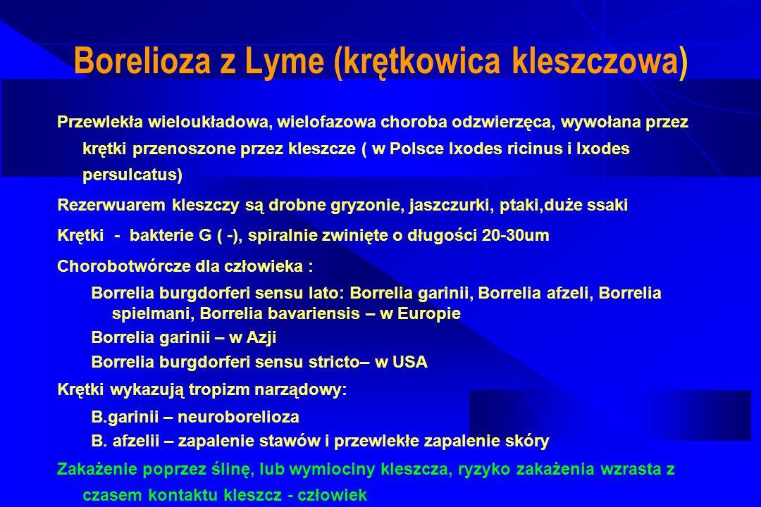 Borelioza z Lyme (krętkowica kleszczowa)