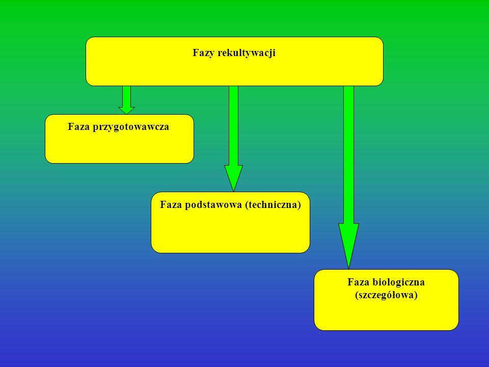 Faza podstawowa (techniczna) Faza biologiczna (szczegółowa)