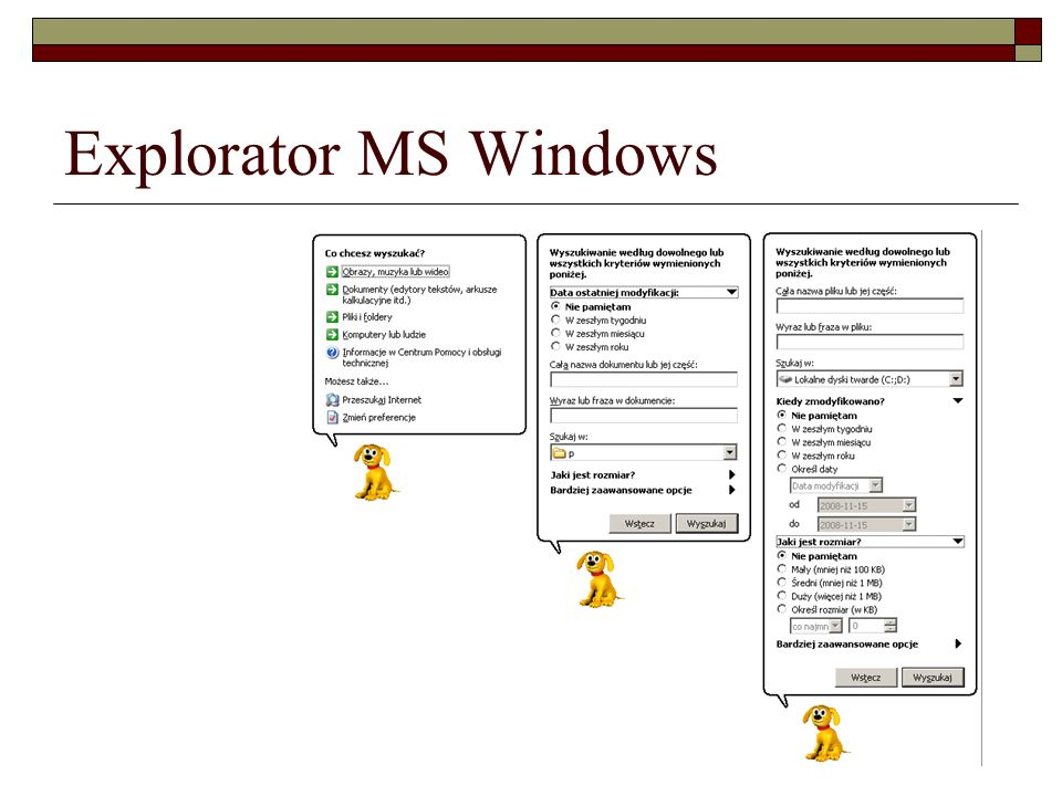 Explorator MS Windows