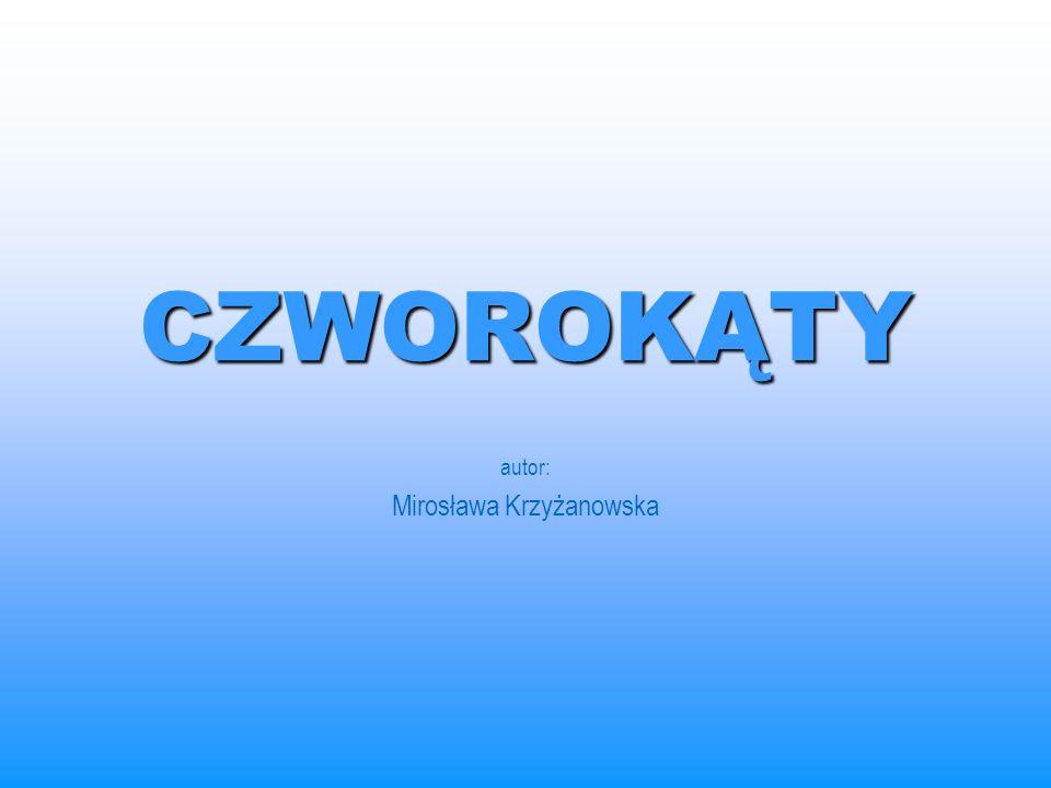 autor: Mirosława Krzyżanowska