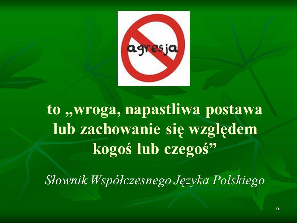 Słownik Współczesnego Języka Polskiego
