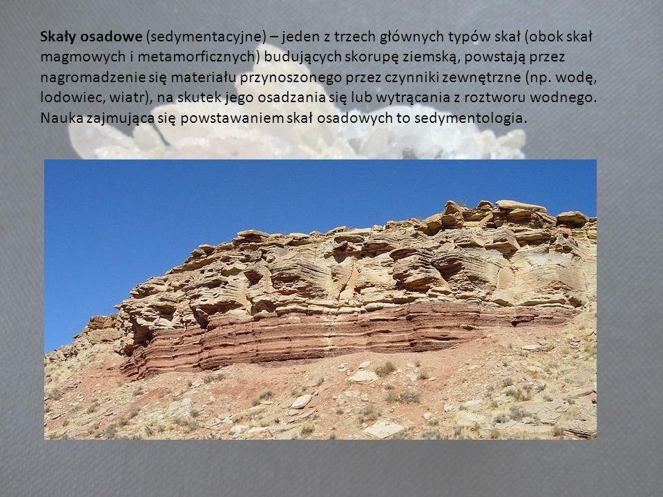 Skały osadowe (sedymentacyjne) – jeden z trzech głównych typów skał (obok skał magmowych i metamorficznych) budujących skorupę ziemską, powstają przez nagromadzenie się materiału przynoszonego przez czynniki zewnętrzne (np.