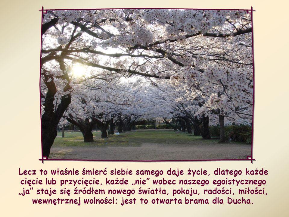 """Lecz to właśnie śmierć siebie samego daje życie, dlatego każde cięcie lub przycięcie, każde """"nie wobec naszego egoistycznego """"ja staje się źródłem nowego światła, pokoju, radości, miłości, wewnętrznej wolności; jest to otwarta brama dla Ducha."""