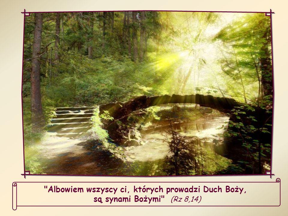 Albowiem wszyscy ci, których prowadzi Duch Boży, są synami Bożymi (Rz 8,14)
