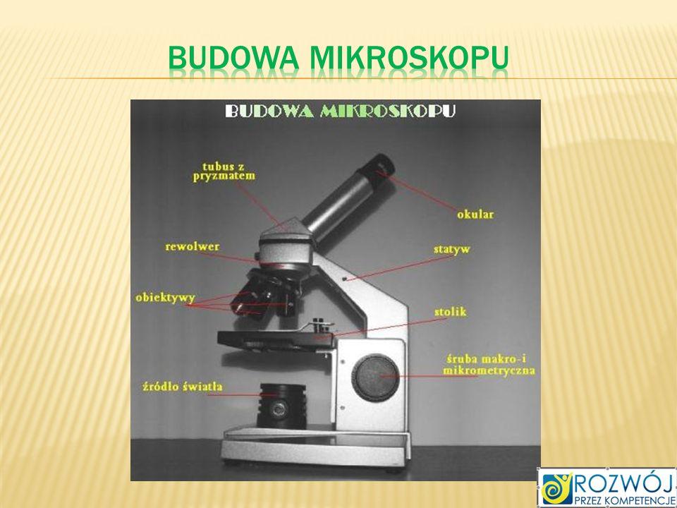 Budowa mikroskopu