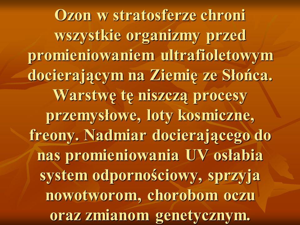 Ozon w stratosferze chroni wszystkie organizmy przed promieniowaniem ultrafioletowym docierającym na Ziemię ze Słońca.