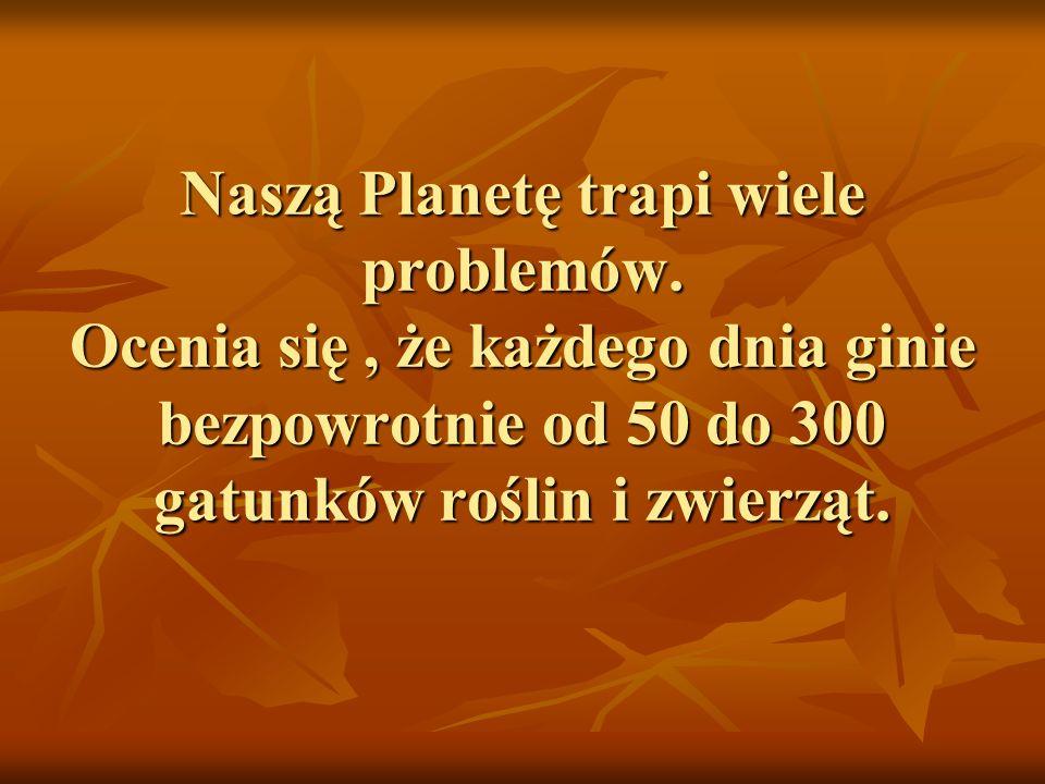 Naszą Planetę trapi wiele problemów