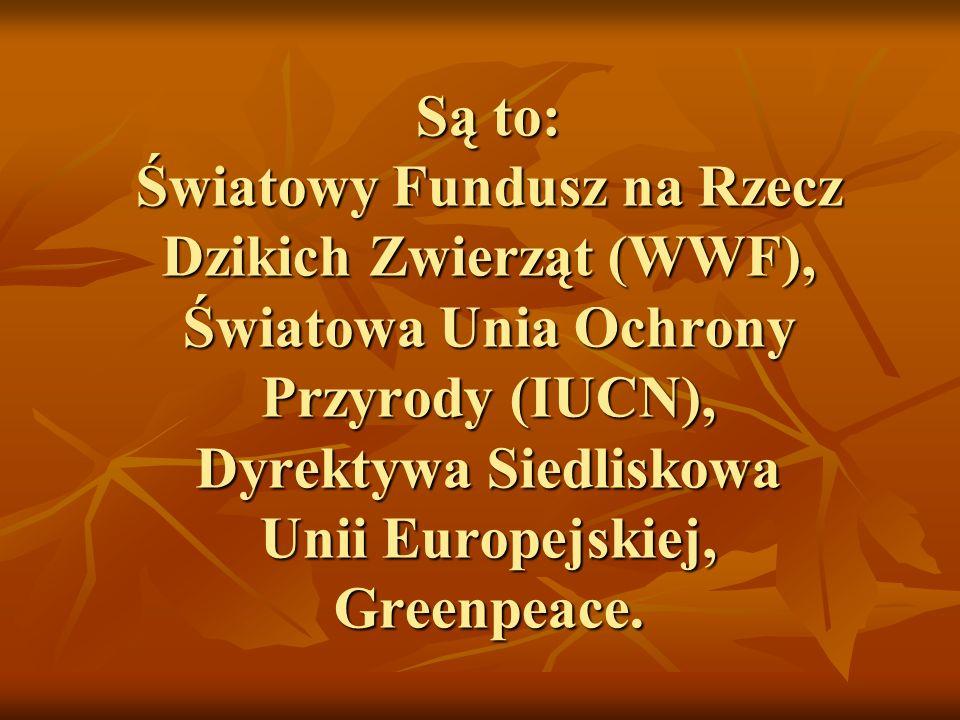 Są to: Światowy Fundusz na Rzecz Dzikich Zwierząt (WWF), Światowa Unia Ochrony Przyrody (IUCN), Dyrektywa Siedliskowa Unii Europejskiej, Greenpeace.