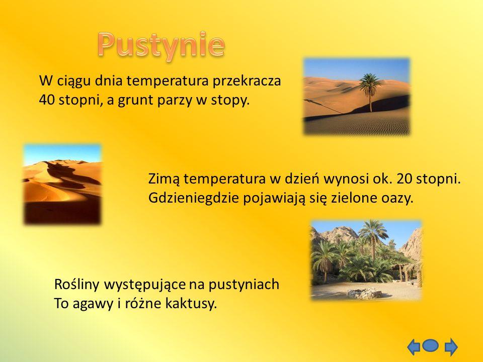 Pustynie W ciągu dnia temperatura przekracza