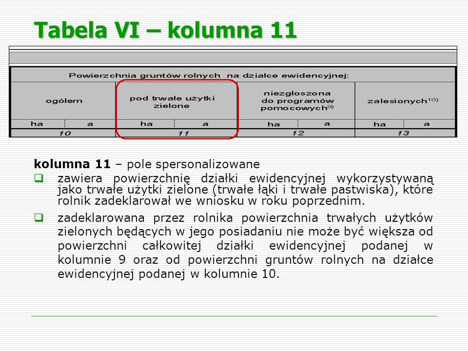 Tabela VI – kolumna 11 kolumna 11 – pole spersonalizowane