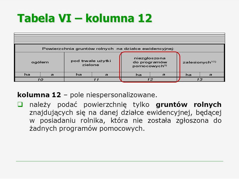 Tabela VI – kolumna 12 kolumna 12 – pole niespersonalizowane.