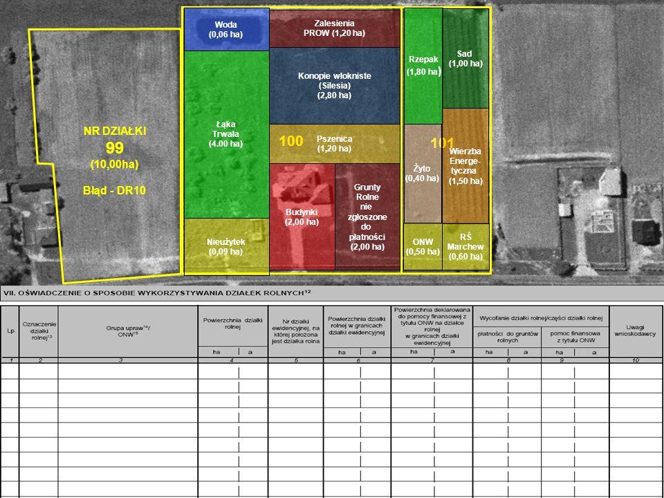 99 100 101 NR DZIAŁKI (10,00ha) Błąd - DR10 Woda Zalesienia (0,06 ha)