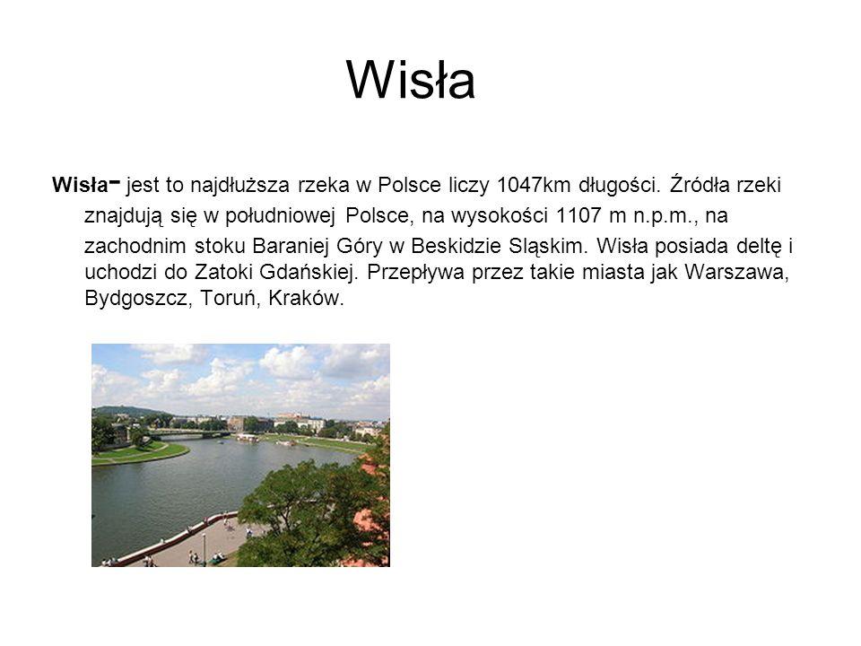 Wisła Wisła- jest to najdłuższa rzeka w Polsce liczy 1047km długości. Źródła rzeki znajdują się w południowej Polsce, na wysokości 1107 m n.p.m., na.