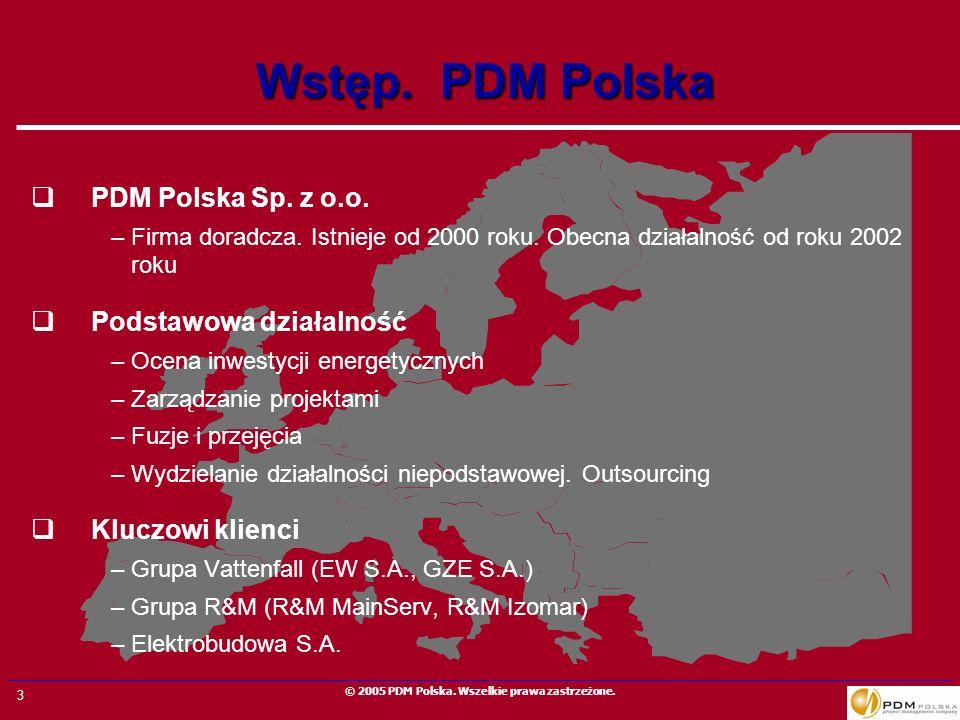Wstęp. PDM Polska PDM Polska Sp. z o.o. Podstawowa działalność