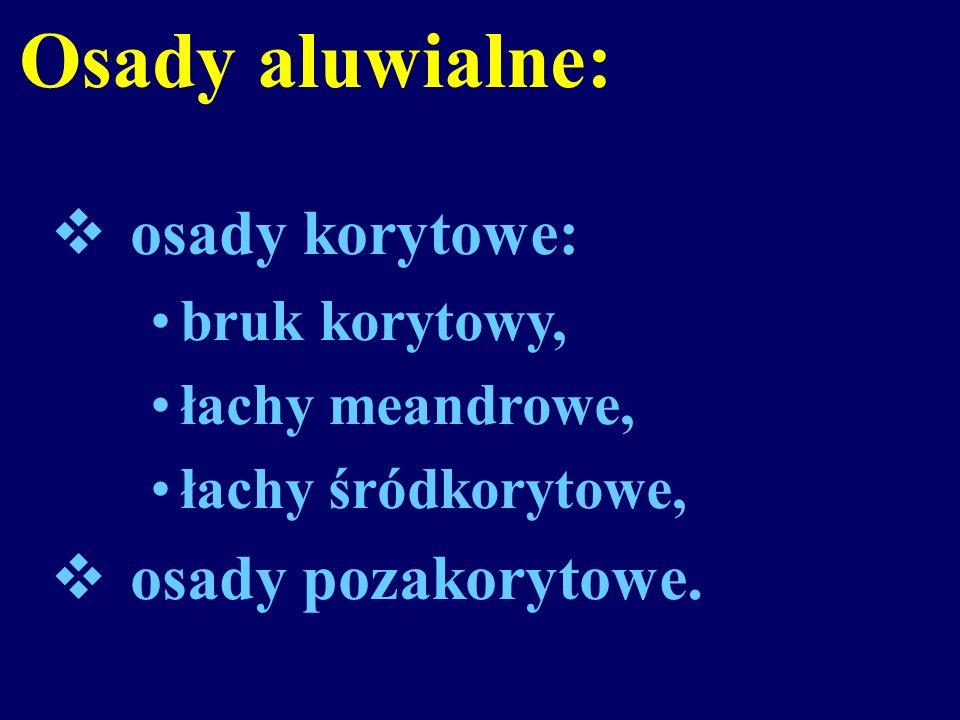 Osady aluwialne: osady korytowe: osady pozakorytowe. bruk korytowy,
