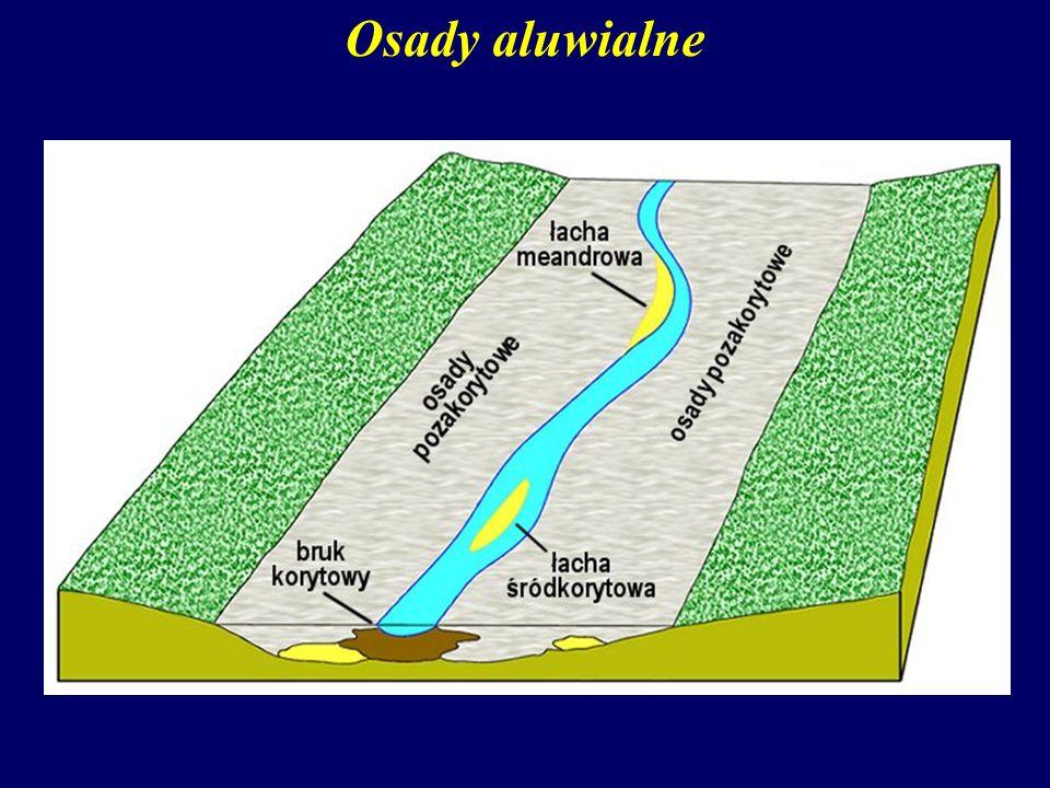 Osady aluwialne Osady korytowe deponowane są: