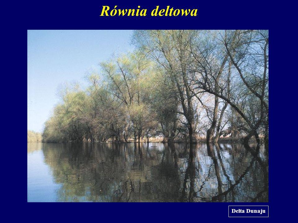 Równia deltowa Delta Dunaju