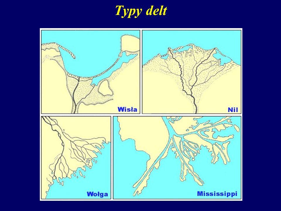 Typy delt Proces rozwoju delty jest uzależniony od wielu czynników, a zwłaszcza od:
