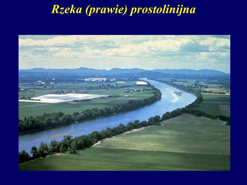 Rzeka (prawie) prostolinijna