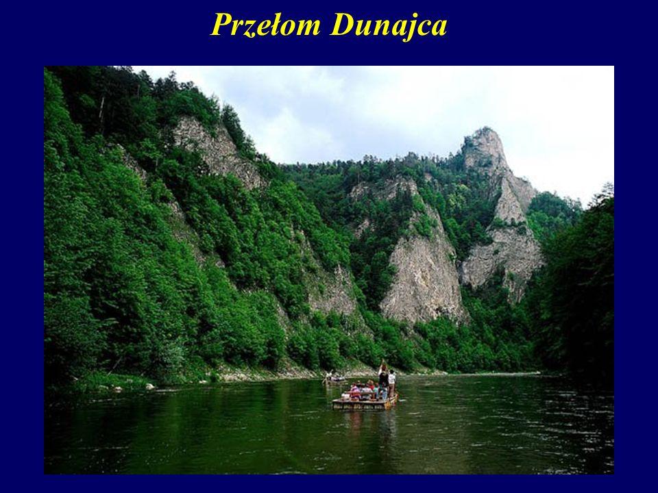 Przełom Dunajca W Polsce najbardziej znanym przełomem rzecznym jest antecedentny przełom Dunajca przez Pieniny (na odcinku Sromowce – Szczawnica).