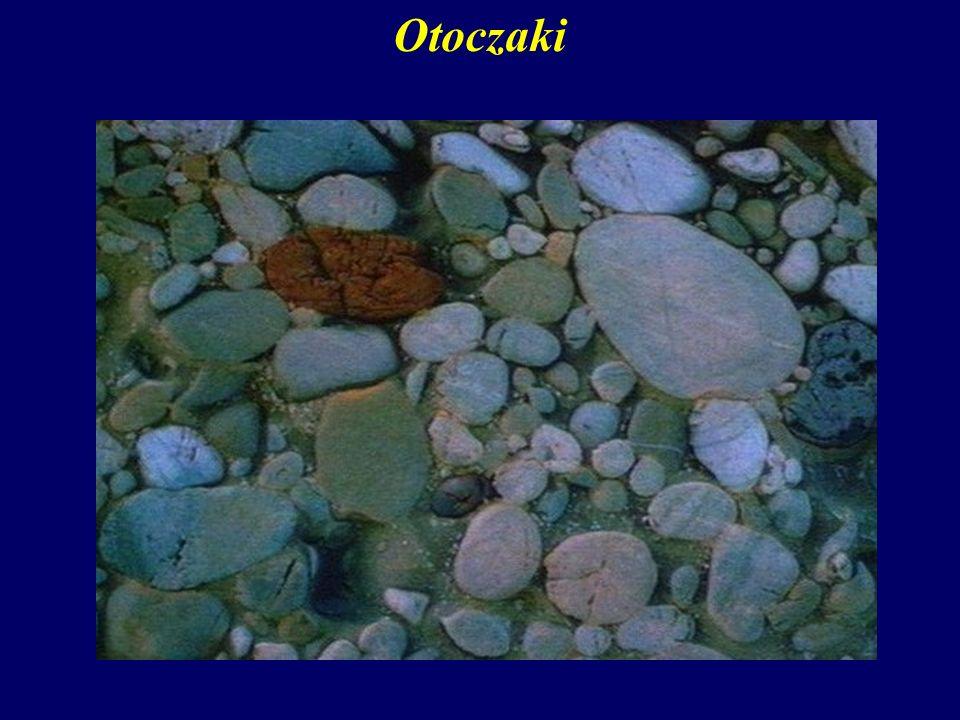 Otoczaki Zaokrąglone przez abrazję okruchy skalne noszą nazwę otoczaków.