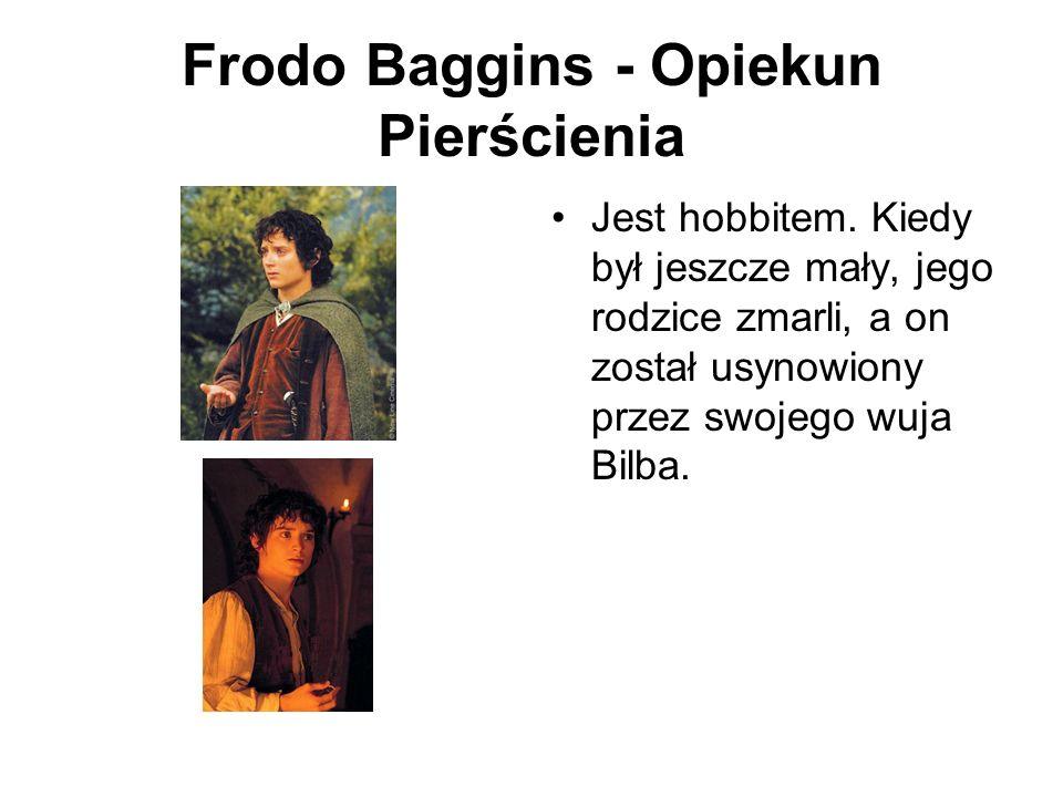 Frodo Baggins - Opiekun Pierścienia