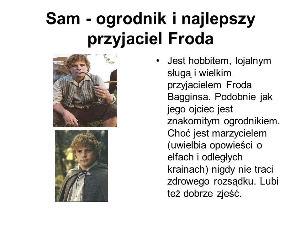 Sam - ogrodnik i najlepszy przyjaciel Froda