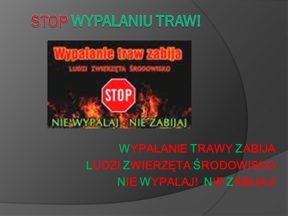 Stop wypalaniu traw! LUDZI ZWIERZĘTA ŚRODOWISKO
