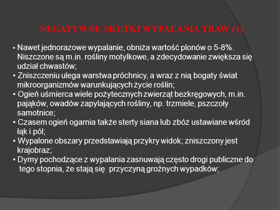NEGATYWNE SKUTKI WYPALANIA TRAW (1)