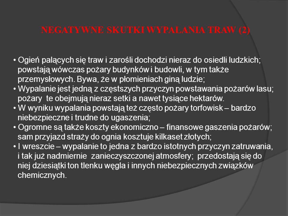 NEGATYWNE SKUTKI WYPALANIA TRAW (2)