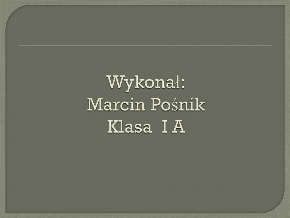 Wykonał: Marcin Pośnik Klasa I A
