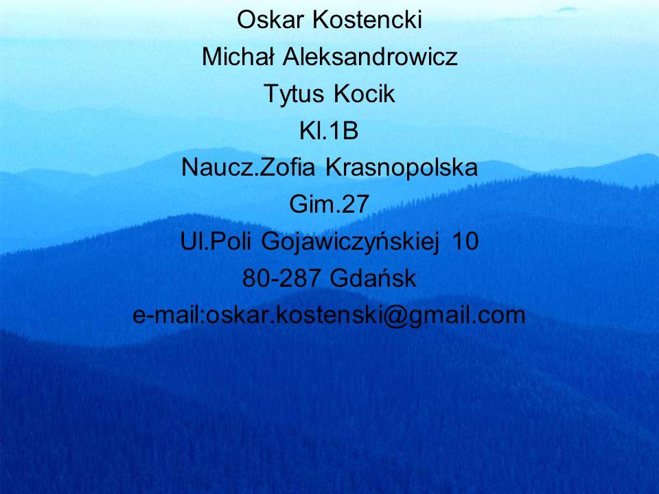 Michał Aleksandrowicz Tytus Kocik Kl.1B Naucz.Zofia Krasnopolska
