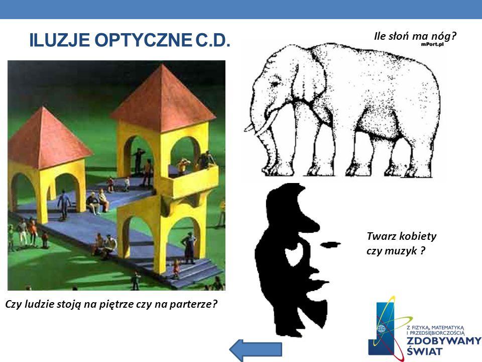 Iluzje optyczne c.d. Ile słoń ma nóg Twarz kobiety czy muzyk
